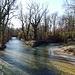 ein kleiner Nebenbach fließt in die Birse