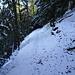 der Abstieg auf der Nordseite ab P 775. Alles ziemlich rutschig, da unter dem Schnee alles gefroren ist.