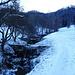 der Modlenbach bei Bützi, im Hintergrund der Nordhang über den ich abgestiegen bin