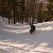 Le Queyras : des forêts taillées pour le ski