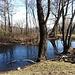 Lo Stagno della Tagliata. Monumento naturale del Parco Regionale Campo dei Fiori.