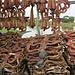 Trockenfisch ist sehr beliebt