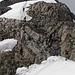 Der Gipfelaufbau des Vorderer Tierberg.