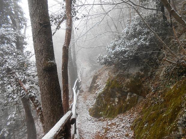 Sentiero degli Alpini verso la Modanna degli Alpini.