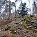 Typisches Gelände am Ellhorn-Sporn