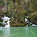 Lac Vert und viele Zuflüsse aus dem Wald