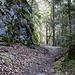 weiter in die Gorge du Pichoux