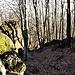 I massi erratici fra i quali passa il sentiero che scende alla Forcella.