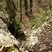 Schöne Kraxelei (Fels I; T4) mit tollem Fels und Wurzelgriffen durch eine Rinne auf der Südseite vom Bärenfels.