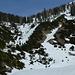 weiter unten wird es mit dem Schnee schon knapper, aber immer noch durchgehende Schneedecke vorhanden