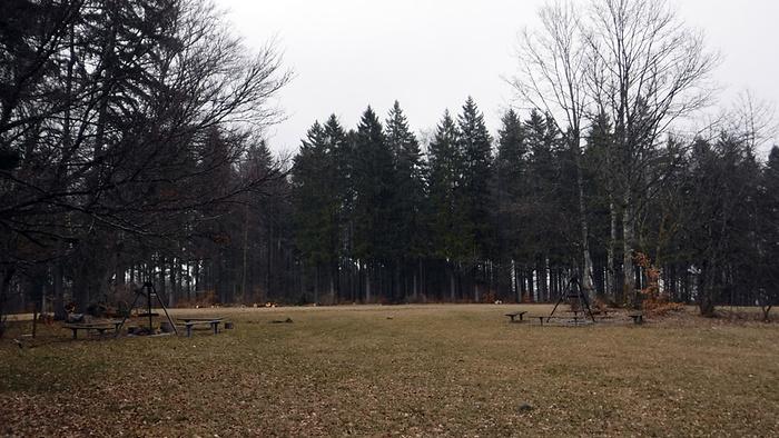 Ein Bild, das Baum, draußen, Gras, Himmel enthält.  Automatisch generierte Beschreibung