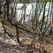 steil abwärts zum Rhôneufer