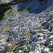 hier gibt es einige Dolinen und messerscharfe Steine