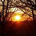 Voilà, die Sonne wird im Osten geboren.