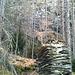 Ruines de la mine de Breiterbach.