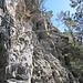 Schlüsselstelle im Abstieg vom Bützi, hier war ich froh um das Seil