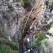 Chute d'arbre. Vu depuis le pont sur la Lonza (P.872)