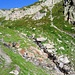 Il fiume Ticino è poco più che un rigagnolo