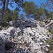 An einer Stelle führt eine Leiter über die schrattigen Kalkplatten