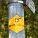 Pour ne froisser personne, c'est le drapeau suisse qui est sur les panneaux du jura bernois, et pas celui du canton :)