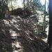 Bisse de Obere Birch, avant le vallon du Gollerufi.