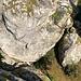 Blick in einen fb 4er Abstiegsboulder