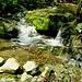 Torrente Val Cugnolo l'unica acqua incontrata oggi