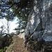 Oberhalb der einfachen Kletterstelle gelangt man auf diesem schmalen Weglein in die nachfolgende Flanke.