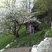 Cabane de jardin à Derfji.