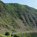 oberhalb von Bremm mit Blick zum steilsten Weinberg Europas<br /><br />ungefähr auf halber Höhe quert der Steig den Hang