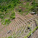 Weinprobestand am Klettersteig (?!)