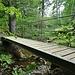 Brücke reiht sich an Brücke im Sagenraintobel