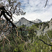 Wilde, naturbelassene Landschaft