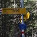 Normalroute zur Doldenhornhütte.