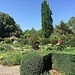 Kräuter- und Heilgarten im Kreuzlinger Seepark