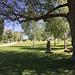 letzter Blick zurück in den Seeburgpark