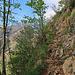 ein felsiger Weg zieht sich zur Altenalp hinauf