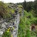 Gemäuer der Ruine Wackenau
