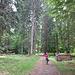 Durch den Wald zum Bot Tschavir