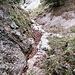 Weiterhin Schluchtenwandern im Eckleitengraben. Bald kommt ein Wasserfall.