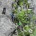 Während ich am Wasserfall entlang aufsteige, sind rechts neben mir ein paar andere am Werk. Schien eine Ausbildungskletterei gewesen zu sein.