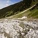 La lunga morena da percorrere fino ai primi pini dove si va poi a destra nei verdi prati e si sale uno strappo che porterà all'Alp Puzzetta