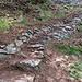 ..Il bel sentiero in costruzione verso i monti della Gana