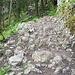 Steiniger Weg nach oben