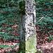Grenzstein von 1786 mit dem Berner Bären