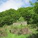 Il sentiero alterna: assolati e selvaggi prati a freschi tratti boschivi.