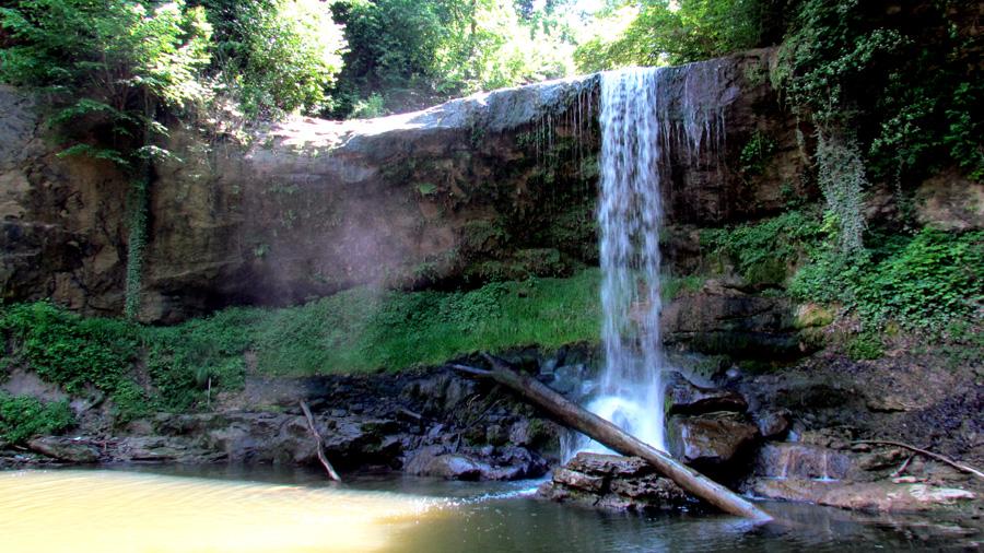 Ein Bild, das Baum, Natur, draußen, Wasser enthält.  Automatisch generierte Beschreibung
