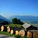 Ausblick vom Bergli ins Glarnerland mit Glärnisch