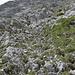 knapp oberhalb der Bildmitte hängt eine Metallplakette am Fels - die sollte man von unten sehen, um den besten Weg zu finden