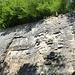 zweite Eindrücke vom Steinbruch